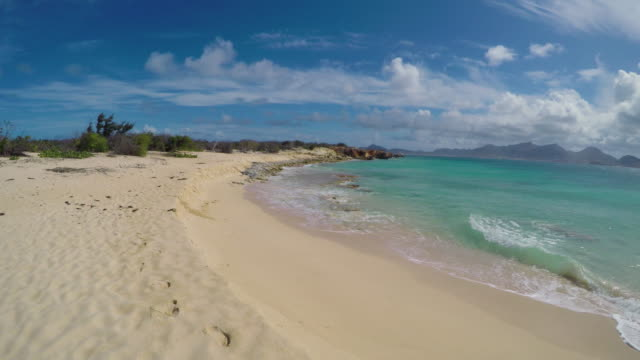 rock and sand on the pristine beach of île tintamarre island in the caribbean sea, near the island of saint martin - saint martin caraibi video stock e b–roll