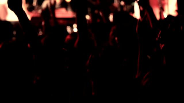 Rock concert crowd. video