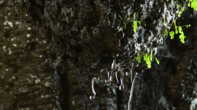 Rock in a cave with water drops sliding and falling through a stalactite Rock in a cave with water drops sliding and falling through a stalactite colloid stock videos & royalty-free footage