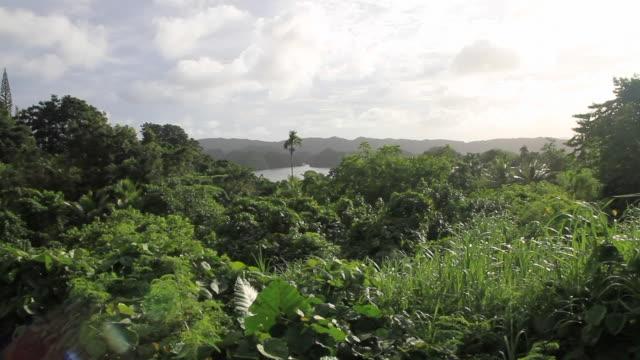 vídeos y material grabado en eventos de stock de islas rocosas - micronesia