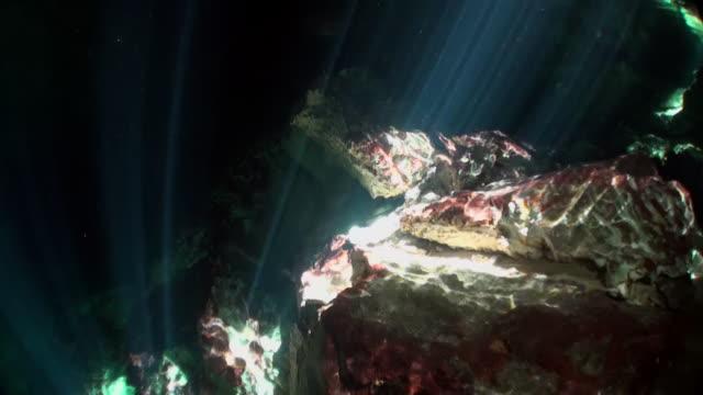 Rotsen in stralen van zonlicht van onderwaterhol Yucatan Mexico cenotes. video