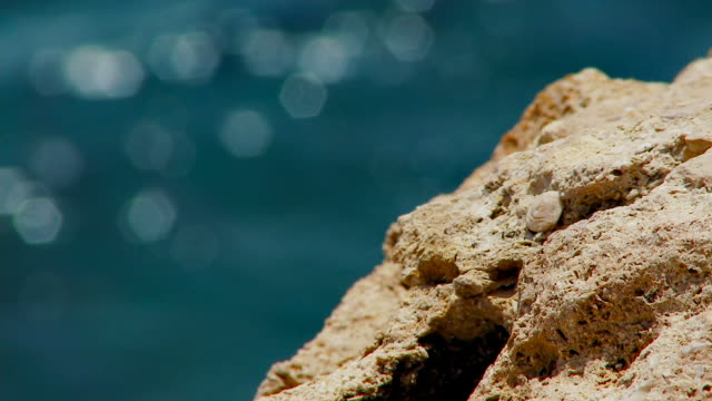 Rocks With Sea In The BG - Seamlessly Loopable video
