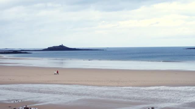 vídeos de stock, filmes e b-roll de costa do oceano atlântico rochoso na bretanha, frança - penedo