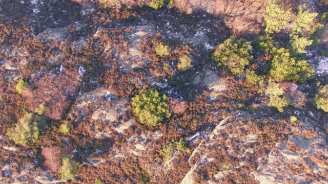 rocky höstlandskap från ovan - bohuslän nature bildbanksvideor och videomaterial från bakom kulisserna