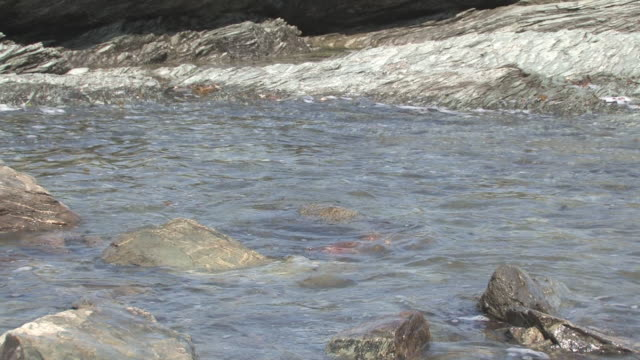 Rocky beach 8 - HD 30F Ocean surf waves in a rocky tide pool 笹 stock videos & royalty-free footage