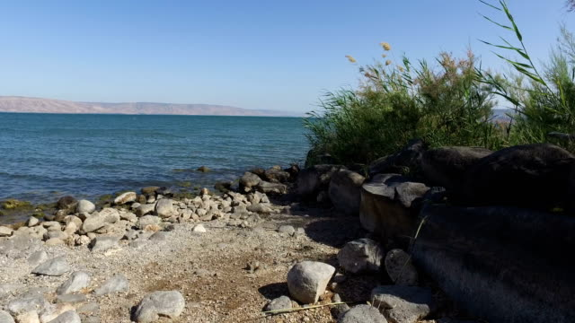 Rocky Beach at Sea of Galilee video