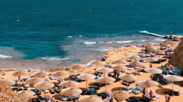 Rocky Beach in a Bay with Umbrellas and Sunbeds in Egypt on Red Sea Rocky Beach in a Bay with Umbrellas and Sunbeds in Egypt on Red Sea. The coastline with coral reefs and waves. People Relax and Sunbathe on the Seashore. Resort on Red Sea Coast. Daytime panoramic view of the Sharm El Sheikh beach. The coastal resort line. The exotic landscape for relaxation. lounge chair stock videos & royalty-free footage