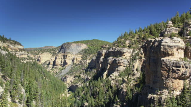 Rocky Cliffs Covered in Trees, Utah - Aerial Shot video