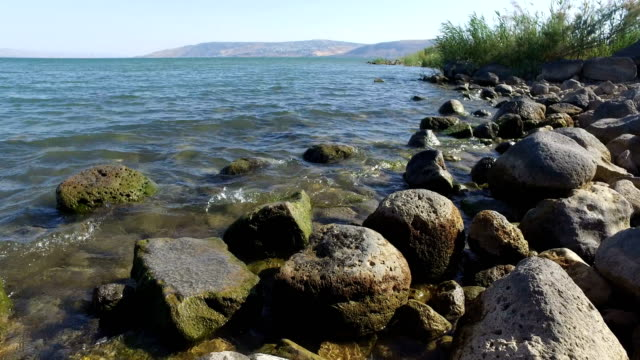 Rocky Coastline at Sea of Galilee video