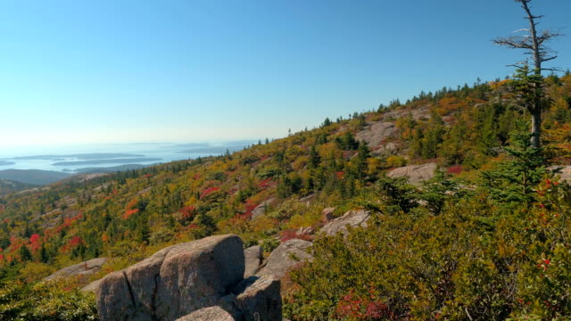CLOSE UP Rocky mountain covered with shrubs overlooking the North Atlantic Ocean video