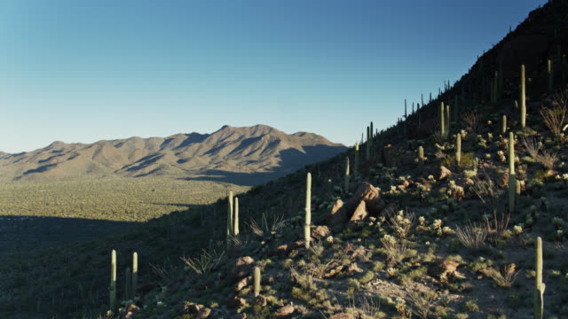 Rocky Slope in Sonoran Desert Near Tucson - Drone