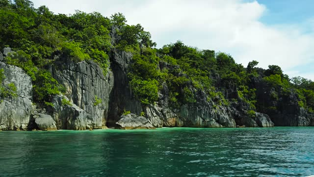 Rocky tropical island with trees