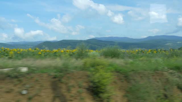 rumänska landskap med tåg - karpaterna tåg bildbanksvideor och videomaterial från bakom kulisserna