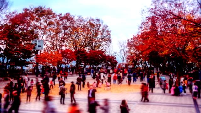 vídeos y material grabado en eventos de stock de romántico de otoño - n seoul tower
