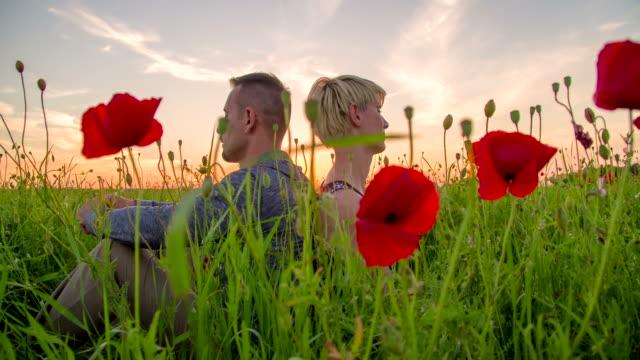 ds romantisches paar sitzt im gras - rücken an rücken stock-videos und b-roll-filmmaterial