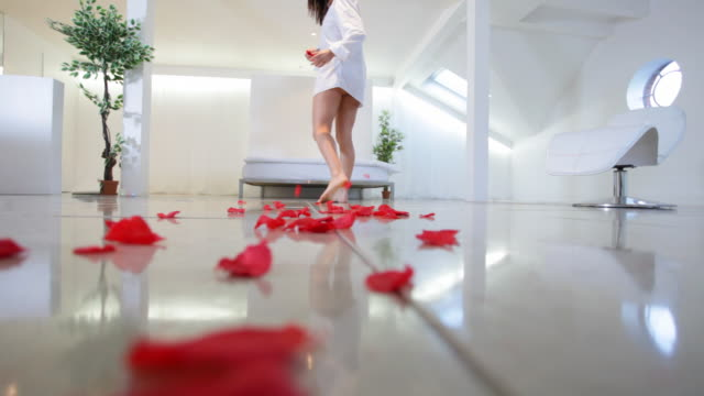 Romantic decoration video