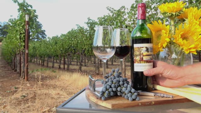 Romantic Picnic Wine Tasting. Pouring Wine in Glasses in a Vineyard Setting video