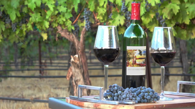 Romantic Picnic Wine Tasting. Two Glasses and a Bottle in a Vineyard Setting video