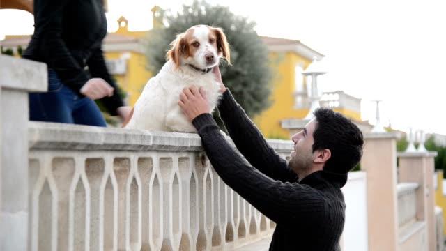 romeo e giulietta-giovane coppia e cane su balaustrata - balaustrata video stock e b–roll