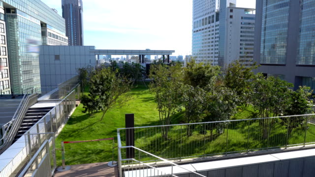 rooftop garden on top of skyscraper in city - risorse sostenibili video stock e b–roll