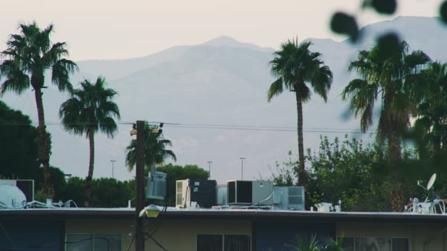 vídeos de stock e filmes b-roll de rooftop view of mountains, palm trees, air conditioners, and power lines in las vegas - oleo palma
