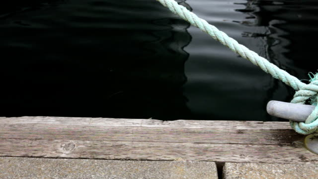 vídeos y material grabado en eventos de stock de cuerda y grapa - amarrado