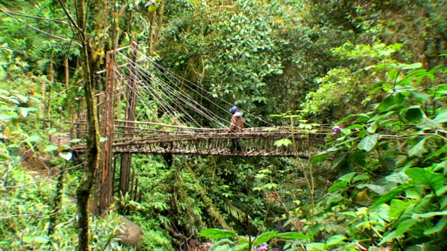 Rope bridge video