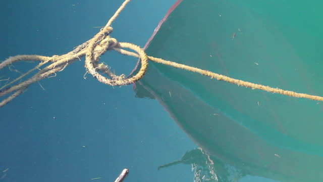 Rope is floating in the sea water video