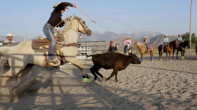 Cowgirl Roping – Video