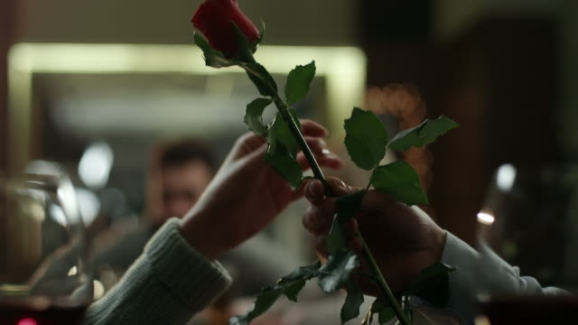 rose for woman - rosa rossa video stock e b–roll
