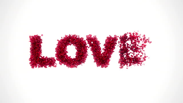 Rose petals flying from Love white background