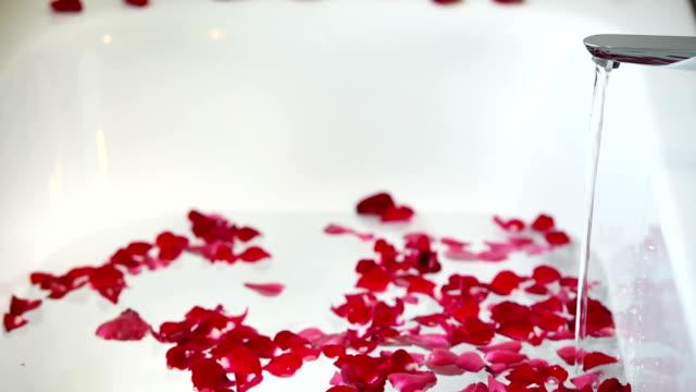 Rosenblätter auf dem Wasser in der Badewanne in Valentinstag – Video