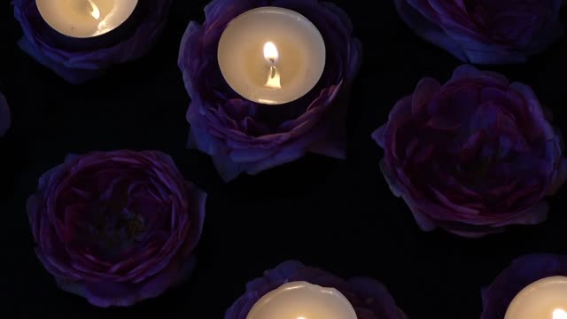Roses and candles on a black background. video