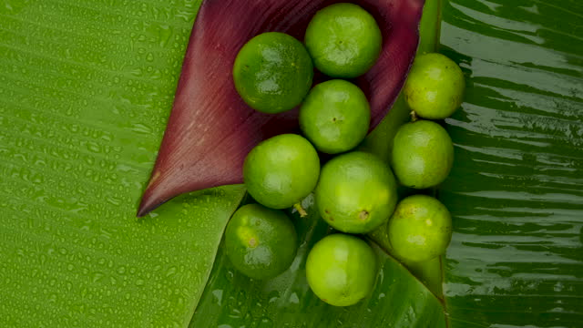 Rotate shot of whole fresh lime juicy on green banana leaves