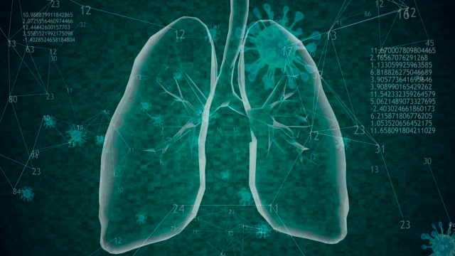 Rotating 360 low polygonal lungs 3D model with coronavirus cells and animated increasing numbers and diagrams. 4k Viruses spread inside human body. 3D model lungs with hight Covid-19 cells concentration. 4k animation emphysema stock videos & royalty-free footage
