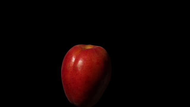 rotating apricot with soft light on black background - video