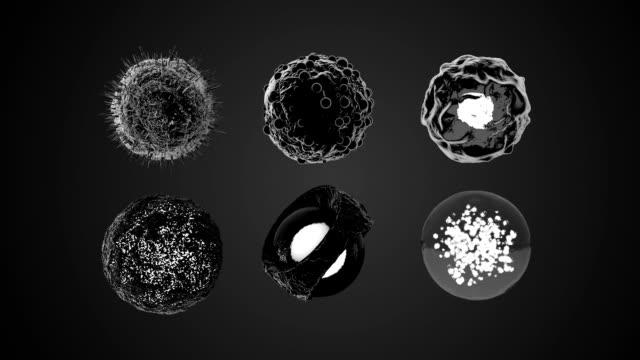 vídeos y material grabado en eventos de stock de 3d rotación de celdas keyable - bacteria