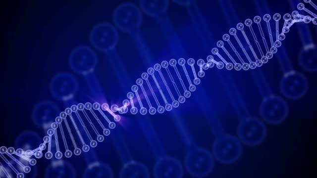 vídeos de stock e filmes b-roll de rotating dna glowing molecule on blue background. 3d rendered loopable animation. genetics concept. 4k footage - hélice formas geométricas