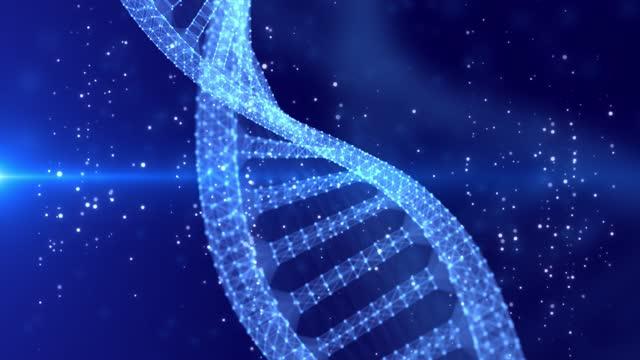 vídeos y material grabado en eventos de stock de molécula brillante de adn giratorio en azul fondo de animación sin costuras 4k - cromosoma