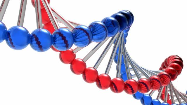 回転 dna 分子 - 遺伝子研究点の映像素材/bロール