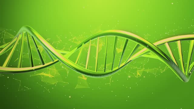 4K Rotating DNA sequence Loopable DNA, DNA Testing, Genetic Research, Laboratory, Experiment biosensor stock videos & royalty-free footage