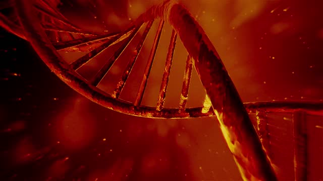 4K Rotating DNA sequence. Realistic background. 3D animation DNA, DNA Testing, Genetic Research, Laboratory, Experiment biosensor stock videos & royalty-free footage