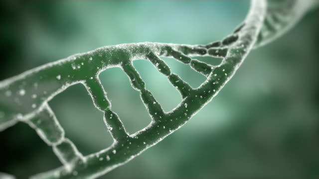 Rotating DNA strand. video