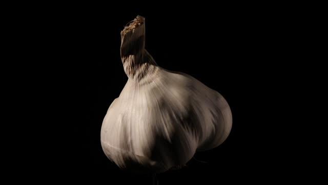 rotating garlic still life on black with soft light - video