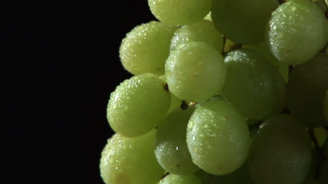 HD: Rotating Grape video