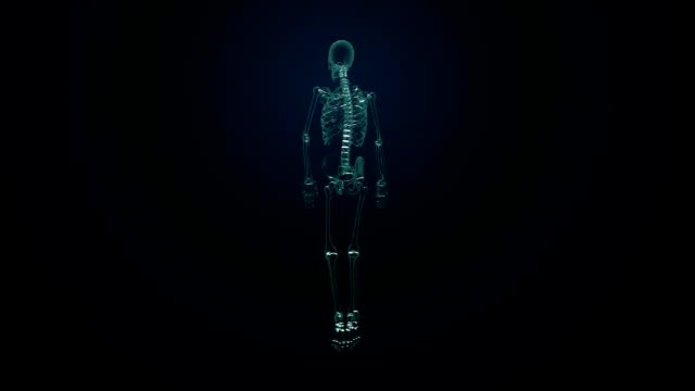 Rotating Human skeletal structure, bone system, Blue  X-ray light. video