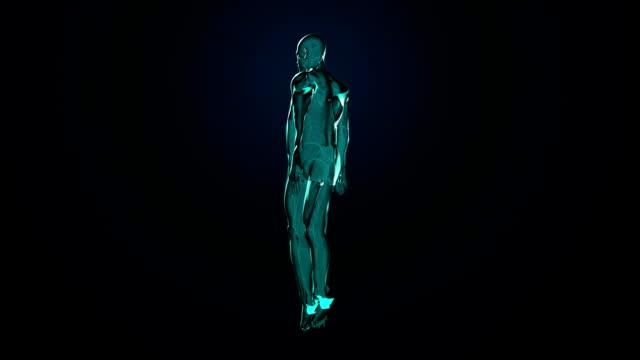 vídeos de stock e filmes b-roll de rotação de pele humana corpo, azul com raios de luz. - aorta