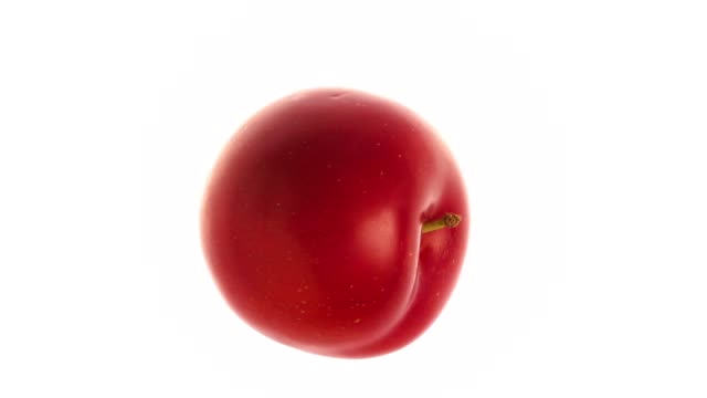rotating red plum on white background - video