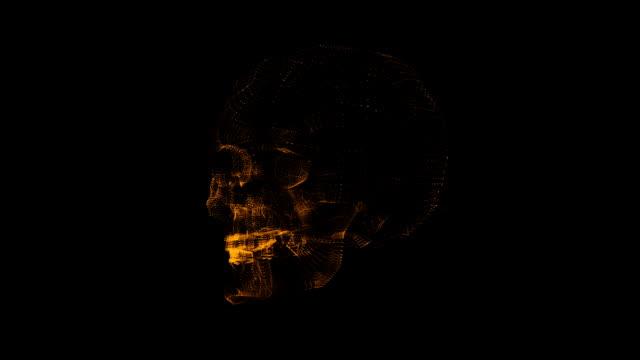 rotating skull video