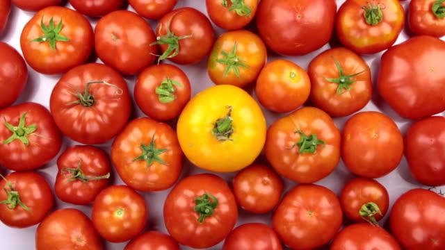 Rotation par tas de tomates rouges et jaunes. - Vidéo